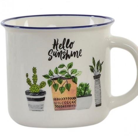 Mug plantas