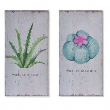 """Cuadros """"World of Succulent"""""""